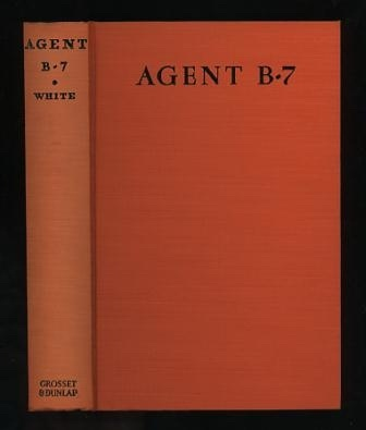 Image for Agent B-7: A Story of the American Secret Service